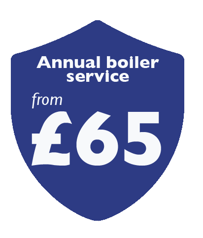Annual boiler service from £65